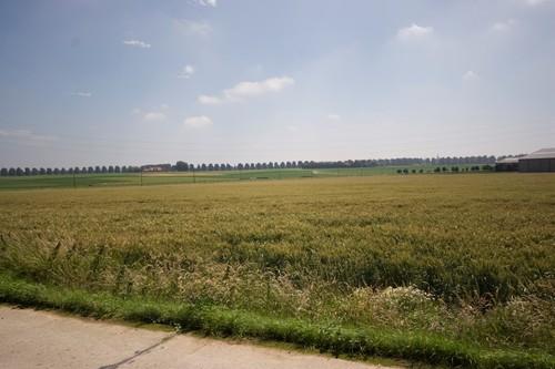 Ieper, Moortelweg, zicht vanaf Hörnchen (Moortelweg-Briekestraat, Boezinge), Pieter Trogh