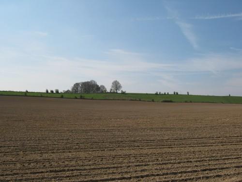 Uitgestrekt akkerbouwlandschap