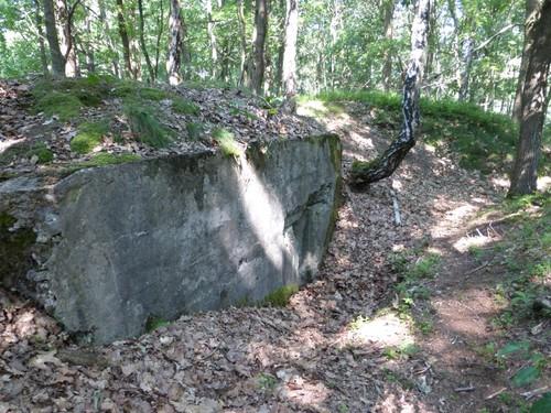 Maasmechelen Steenweg naar As zonder nummer Duits oefenterrein: bunker 6 manschapsbunker, ingegraven in linie dichtst bij steenweg