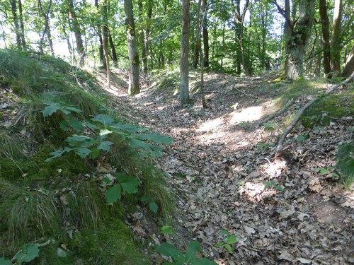 Maasmechelen Steenweg naar As zonder nummer Duits oefenterrein: loopgraaf achterste linie bij steenweg