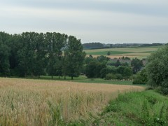Vallei van de Maarkebeek stroomafwaarts Maarke