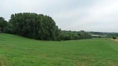 Burreken en vallei van de Maarkebeek stroomopwaarts Maarke