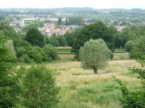 Oudenaarde Ename Blote zicht op bos, Hoedemakersveld, Konijnenberg en dorpskern Ename