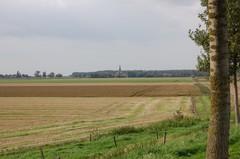 Brakwaterschorren langsheen de Schelde ten noorden van Antwerpen