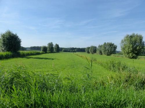 Eeklo Leikensweg Het Leen strookvormige graslanden ten noorden bos