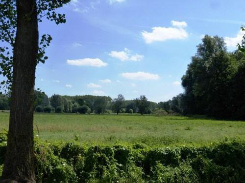 Destelbergen Heusden Dries graslanden bij Kolkbeek