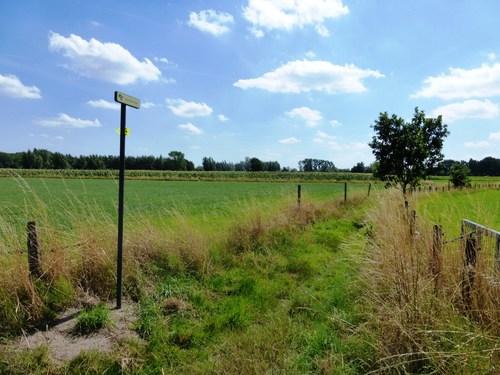 Destelbergen Heusden Dries pad Dammersrede omgeving Schalieveldhoeve