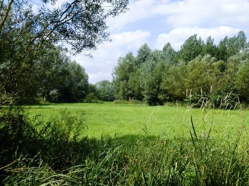 Destelbergen Heusden graslanden bij Kolkbeek