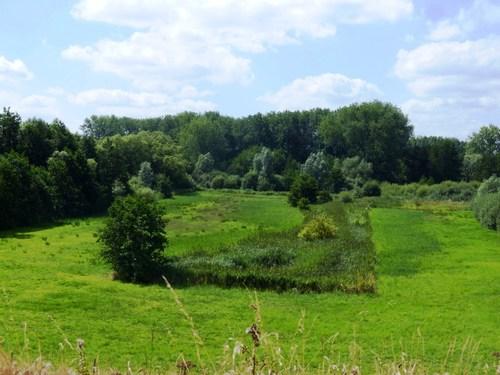 Laarne Meerskant hooilanden bij Mostbeek