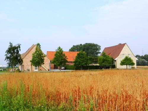 Ieper Veurnseweg 37