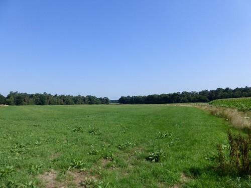 Open agrarisch landschap