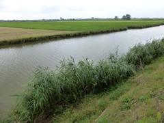 IJzervallei tussen Elzendamme en Woumen en Lovaart bij Pollinkhove