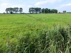 Meetkerkse Moeren, poldergebied rond Houtave en overgang naar zandstreek