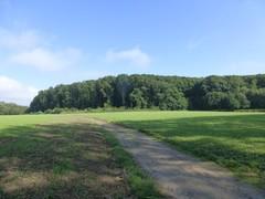 Kravaalbos en omgeving