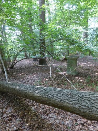 Bos van Kolmont, beeldensokkel