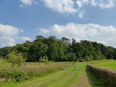 Valleien van Mombeek en Fonteinbeek met burcht en bos van Kolmont