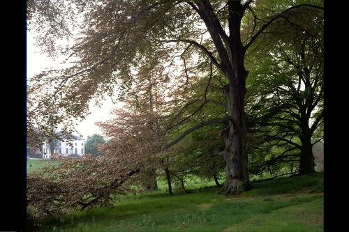Lovenjoel Groot Park