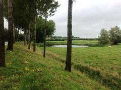 Krekengebied van Kieldrecht en Meerdonk