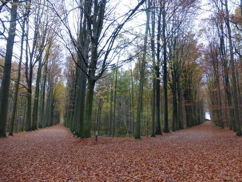 Tervuren Warande