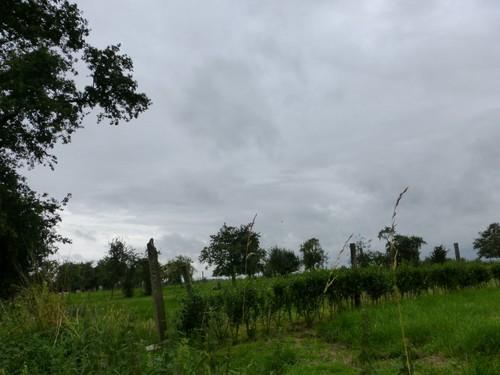 Borgloon, Broekom, Hoogstamboomgaard