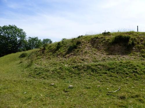 Voeren, Moelingen, vallei van de Berwijn, houtkant op talud