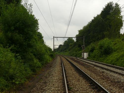 Voeren, Chemin du Bois du Roi, houtkanten op talud bij spoorwegberm