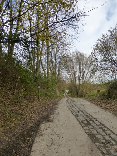 Romeinse weg, zicht richting oosten, Borgloon.