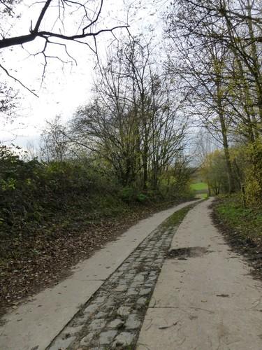 Romeinse weg, zicht richting westen, Borgloon.