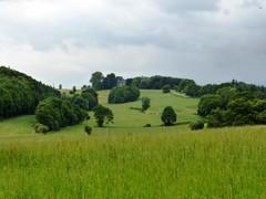 Voeren, Peerds, omgeving kasteel Magis (https://id.erfgoed.net/afbeeldingen/234656)