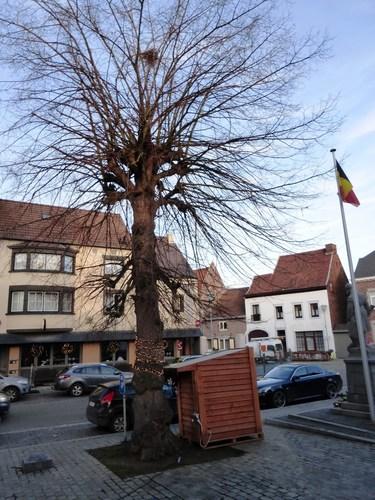 Oorlogsmonument en vredesboom