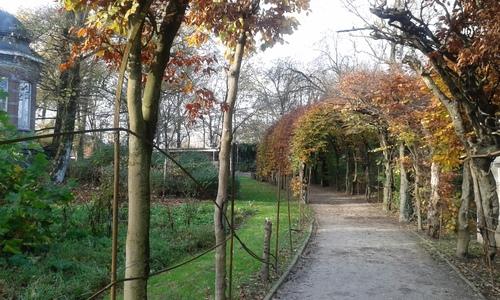 Wevelgem Vanackerestraat Kasteelpark berceau (1)