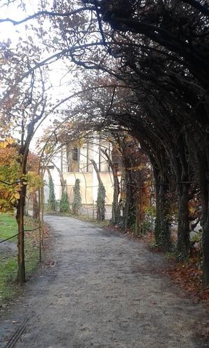 Wevelgem Vanackerestraat Kasteelpark berceau (3)