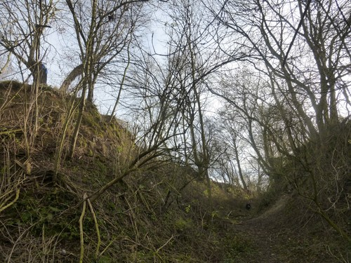 Borgloon, Bommershoven, Romeinse Kassei, holle weg en Puesboom (links).