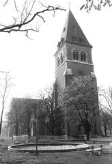Leopoldsburg Kastanjedreef zonder nummer (https://id.erfgoed.net/afbeeldingen/238399)