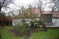 Hoogstamboomgaard bij kunstenaarswoning Huis Ten Berghe