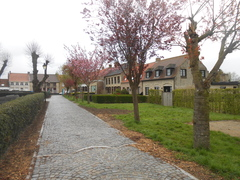 Dorpskom Leisele