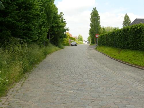 Zottegem Velzeke Lippenhovestraat kasseiweg (9)