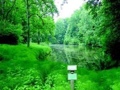 De huidige vijver beslaat nauwelijks één derde van deze op het plan van Galoppin en wordt momenteel als natuurreservaat beheerd. (https://id.erfgoed.net/afbeeldingen/242535)