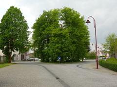 Beboomd dorpspleintje met gekandelaarde linden