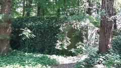 Bunker 8