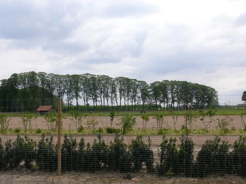 Gent Drongen Kasteeldreef Zilverlinden Schouwbroek (1)