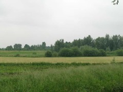 Prehistorisch sitecomplex in alluviale context van Nijlen-Varenheuvel-Abroek