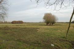 Archeologisch sitecomplex in alluviale context in de Demervallei