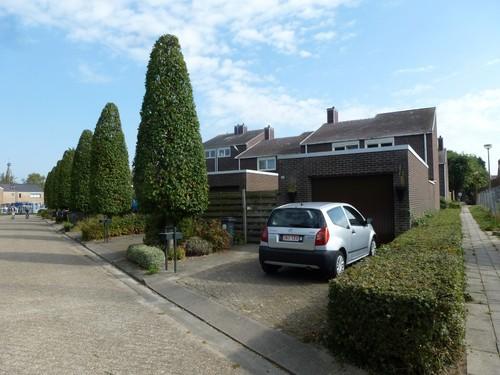 Baarle-Hertog Dr. Govaertsplantsoen 40-46
