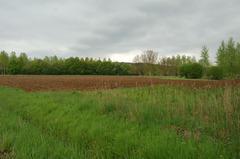Prehistorisch sitecomplex in alluviale context in de Wingevallei