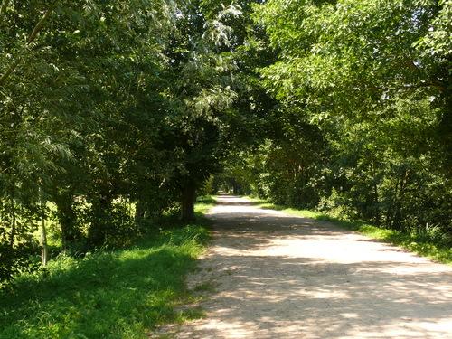 Laarne Dreven ten zuiden en ten westen van de kasteelsite (1)