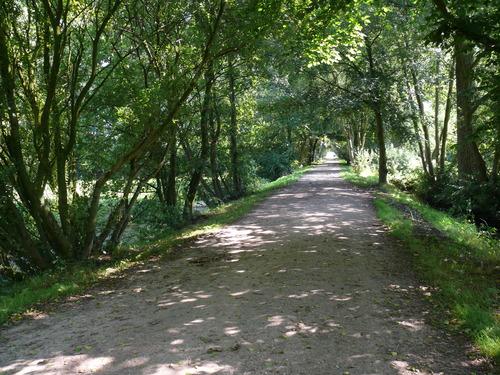 Laarne Dreven ten zuiden en ten westen van de kasteelsite (5)