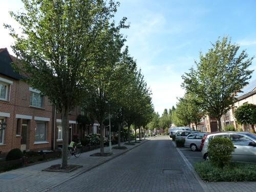 Antwerpen Weerstandlaan_BO straatbeeld