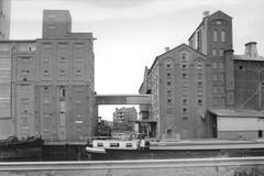 Molens van Deinze en Antwerpen
