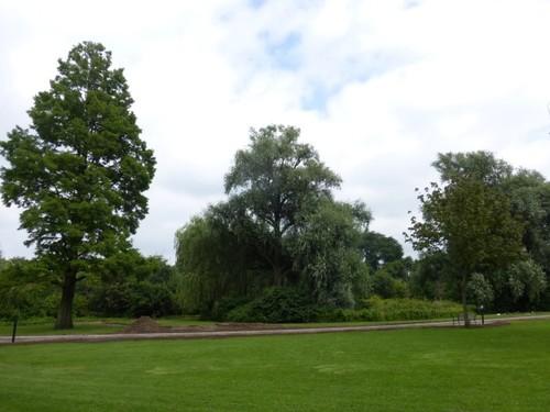 Antwerpen Terlindenhofstraat 204 Het centrale grasveld in het park van Runcvoort
